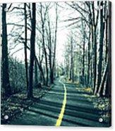 Narrow Path Acrylic Print