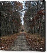 Narrow Path On Recovery Road Acrylic Print