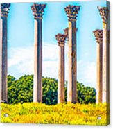 National Capitol Columns Acrylic Print
