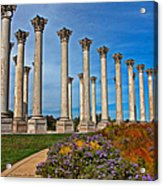 National Capitol Columns Acrylic Print