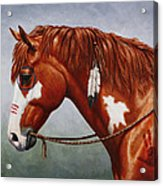 Native American War Horse Acrylic Print by Crista Forest