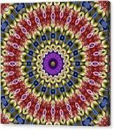 Natural Attributes 14 Square Acrylic Print