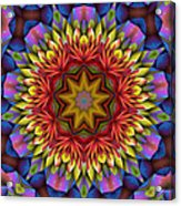 Natural Attributes 17 Square Acrylic Print