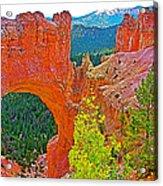 Natural Bridge In Bryce Canyon National Park-utah  Acrylic Print