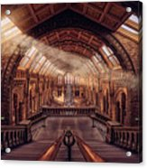 Natural History Museum - London Acrylic Print