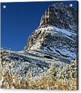 Natural Picture Frame Acrylic Print