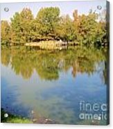Natural Reflections Acrylic Print
