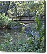 Natural Springs Acrylic Print