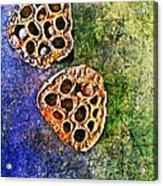 Nature Abstract 20 Acrylic Print