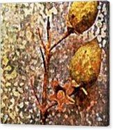 Nature Abstract 21 Acrylic Print