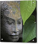 Nature Cambodia Siem Reap 03 Acrylic Print
