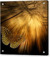 Nature Does Not Hurry Follow The Light Acrylic Print