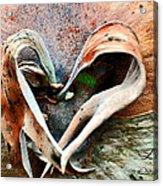 Nature Has A Heart  Acrylic Print