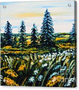 Nature Landscape Field Flowers Pines Art  Acrylic Print by Drinka Mercep