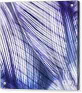 Nature Leaves Abstract In Blue And Purple Acrylic Print