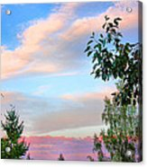 Nature Palette Acrylic Print