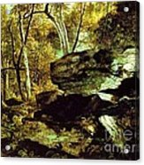 Nature Study Rocks And Trees Acrylic Print