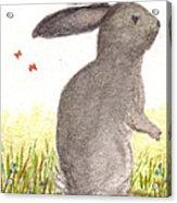 Nature Wild Rabbit Acrylic Print
