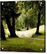 Nature Wonderland Acrylic Print