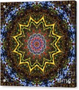 Naturel Star Acrylic Print