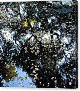 Nature's Art Acrylic Print