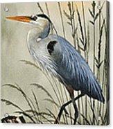 Nature's Beauty Acrylic Print