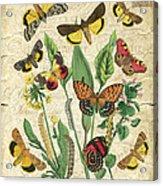 Natures Beauty-no.1 Acrylic Print