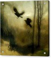 Nature's Blur Acrylic Print