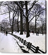 Nature's Canvas On A Wintry Day Acrylic Print