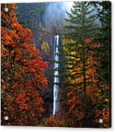 Nature's Color's Acrylic Print