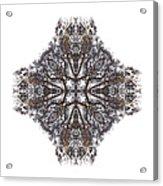 Nature's Filigree Acrylic Print