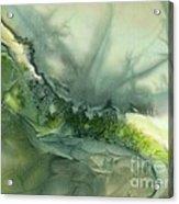 Nature's Flow Acrylic Print