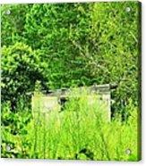 Natures Green Acrylic Print