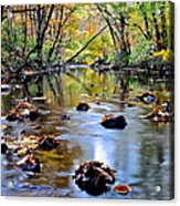 Natures Mood Lighting Acrylic Print
