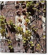 Nature's Mosaic Acrylic Print
