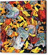 Nature's Tapestry Acrylic Print