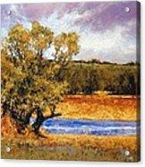 Nature's Trail - Ridgefield Acrylic Print