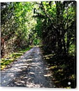 Nature's Trail Acrylic Print