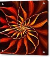 Nautilus Fractalus Fire Acrylic Print