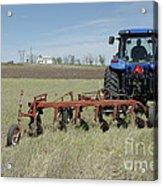 Nebraska Wheat Field Acrylic Print