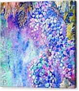 Nectar Of Nature Acrylic Print by Zaira Dzhaubaeva