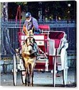 Need A Ride Acrylic Print