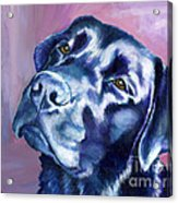 Need Help With That? Black Lab Acrylic Print