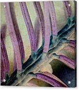 Needled 9 Acrylic Print