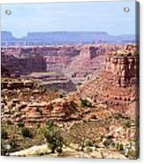 Needles Grand Canyon Acrylic Print by Adam Jewell