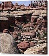 Needles In Canyonlands Acrylic Print