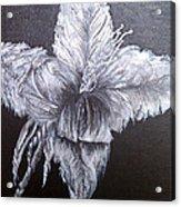 Negative Essence Acrylic Print