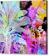 Negative Plants Acrylic Print