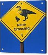 Nene Crossing Sign Haleakala National Park Acrylic Print