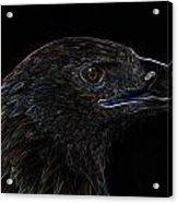 Neon Eagle Acrylic Print